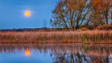 2017 Beaver (aka Frost) Moon Setting P1270310-6