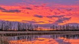 Rideau Canal Sunrise P1270439-3