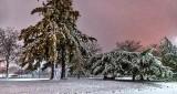 2017-18 Winter First Snow P1270607-9