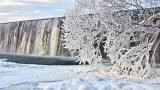 Frosted Tree Beside A Falls DSCN18222-4