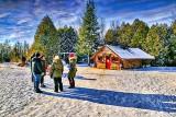 At Ian's Christmas Tree Farm P1280701-5
