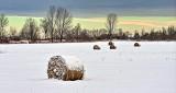 Winter Farmscape DSCN18375-7