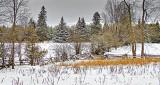 Winterscape DSCN18386