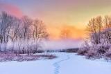 Freezing Fog At Sunrise DSCN18400