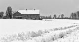 Winter Farmscape P1280794-6