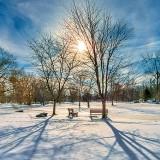 Stewart Park In Winter DSCN18737-9