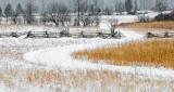 Winterscape DSCN18796