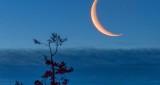 Crescent Moon Over Cloud Bank P1290473.83