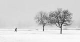 Foggy Winter Morning P1290512