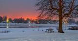 Overcast Winter Dawn P1290497-9