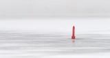 Red Channel Marker In Winter Fog P1290508