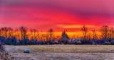 Sunrise Color P1300277-81