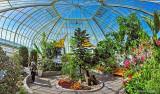 Tropical Greenhouse DSCN20667-94