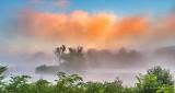 Sunrise Fog DSCN25846-8