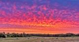 Field Of Bales At Sunrise DSCN26582-7