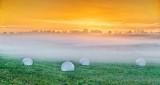 Four Bales In Foggy Sunrise P1310842-4