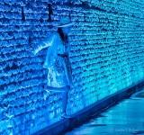 'Avoid Touching The Walls' DSCN27577