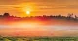 Sunrise Over Ground Fog P1320006-12