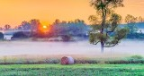 Sunrise Ground Fog P1320380-6