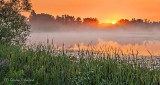 Misty Irish Creek Sunrise P1320800-6