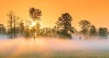 Ground Fog At Sunrise P1320831-7