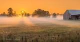 Ground Fog At Sunrise P1320866-72