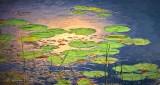 Lily Pads Art DSCN31480