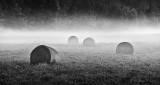 Bales in Ground Fog P1340268BW