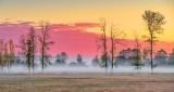Ground Fog At Sunrise P1340455-7