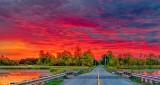 Roses Bridge Sunrise P1340741-5