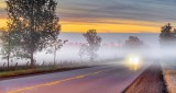 Car In Ground Fog P1340659-61
