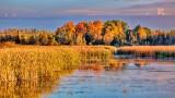 Autumn Otter Creek P1000652-4
