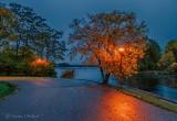 Autumn Canal Lights P1340971-7