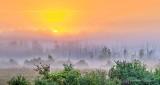 Sunrise Through Ground Fog P1330597-03