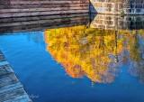 Autumn Reflected P1010529-31