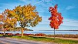 Autumn St Lawrence Seaway P1020382-4