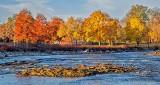 Duck Island Autumn Trees P1020807
