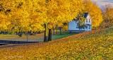 Autumnscape P1020894-6