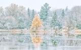 Autumn Snowscape P1030316-7