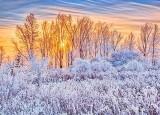 Frosty Sunrise P1030630-6