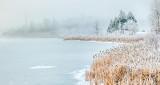 Freezing Fog Along Otter Creek P1030512-4