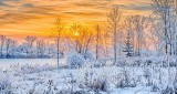 Frosty Sunrise P1030596-02