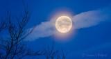 Moon Beyond Contrail P1350453-66