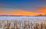 Frosty Otter Creek At Sunrise P1030548-50
