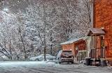 Snowy Mary Street North P1350631-7