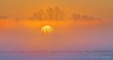 Sunrise Through Ground Fog P1360192-8