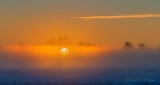Sunrise Through Ground Fog P1360220-6