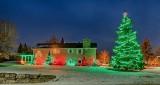 Christmas Lights P1360298-03