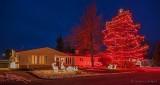 Holiday Lights P1360274-80