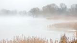 Misty Otter Creek P1040498-00